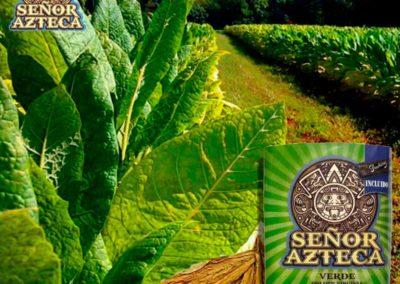 SENOR-AZTECA-GOLDEN-VIRGINIA
